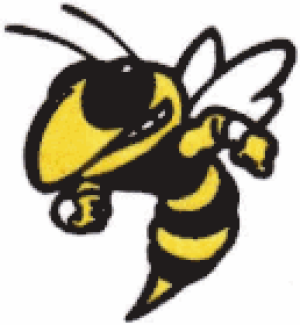 TRACK: Rockmart participated in region meet