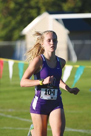 CROSS COUNTRY: Darlington's Fields, Ward top runners in 7-AA meet