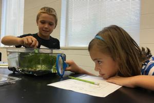 <p>Caden Oswalt and Sara Grace Abernathy examine their aquatic habitat on Thursday, July 14, 2016, at Berry College during the Viking Explorations Gifted and Talented Program. (Contributed by Floyd County school teacher Kami Gillespie)</p>
