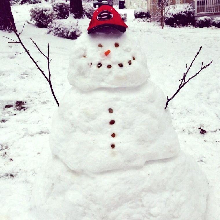 Andrea Walraven's snowman