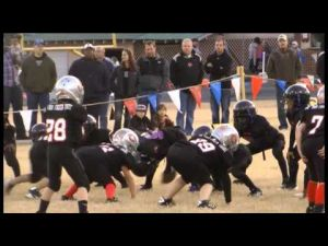 Jr. Pee Wee football: Bulldogs Black finish out perfect with 32-0 shut out of Bears