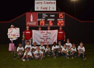 LFO Braves win 6U Rick Honeycutt World Series