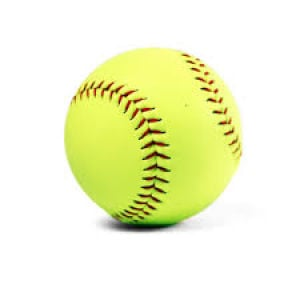 SOFTBALL: Ten Walker County players selected to 7-AAAA All-Region teams