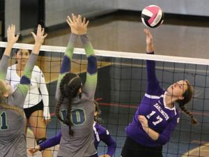 VOLLEYBALL: Lady Tigers win silver bracket at Coosa Invitational after losing first three matches