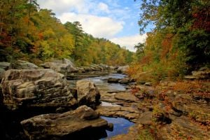 Little River Canyon National Preserve hosts Beginning Birding Walk Dec. 14
