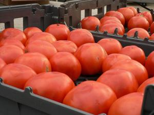 Annual Autumn Walk to the Farmers Market event is Wednesday