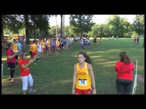 Rome boys and girls win 2013 City-County Championship race
