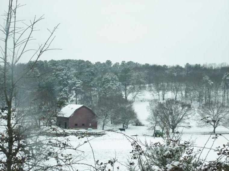 A farm on Lovebridge Rd.