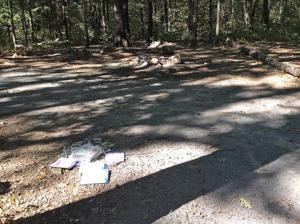 Littered campsite