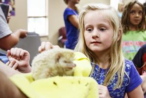 Zoo shows kids animals' homes