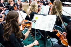 String Orchestra Festival Feb. 12