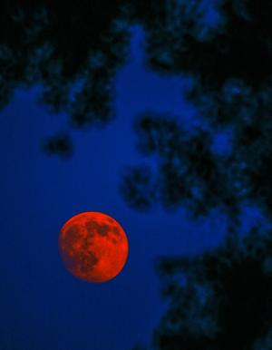 Fire Red Moon