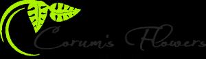 Corum's Flowers & Greenhouse