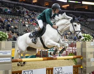 Crowds cheer at The International horse-jumping competition