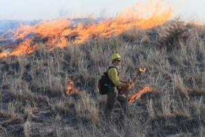 Controlled burns: Crews train to prevent wildfires by setting 'good' fires