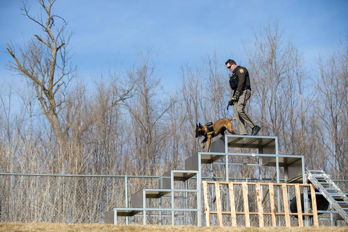 At 16-week 'dog camp,' K-9 recruits train to become a ...
