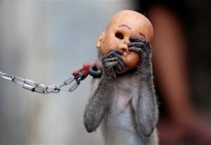 Indonesian city trying to end masked monkey shows