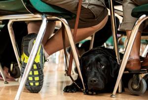 Blind, deaf student wins big with guide dog