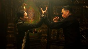 Film review: Kung fu movie 'Grandmaster' a feast for the eyes