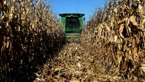UNL report casts doubt on use of corn-crop leftovers for ethanol