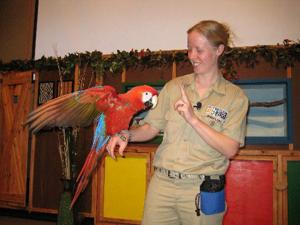 In 'wild' show, animals in spotlight at Henry Doorly Zoo