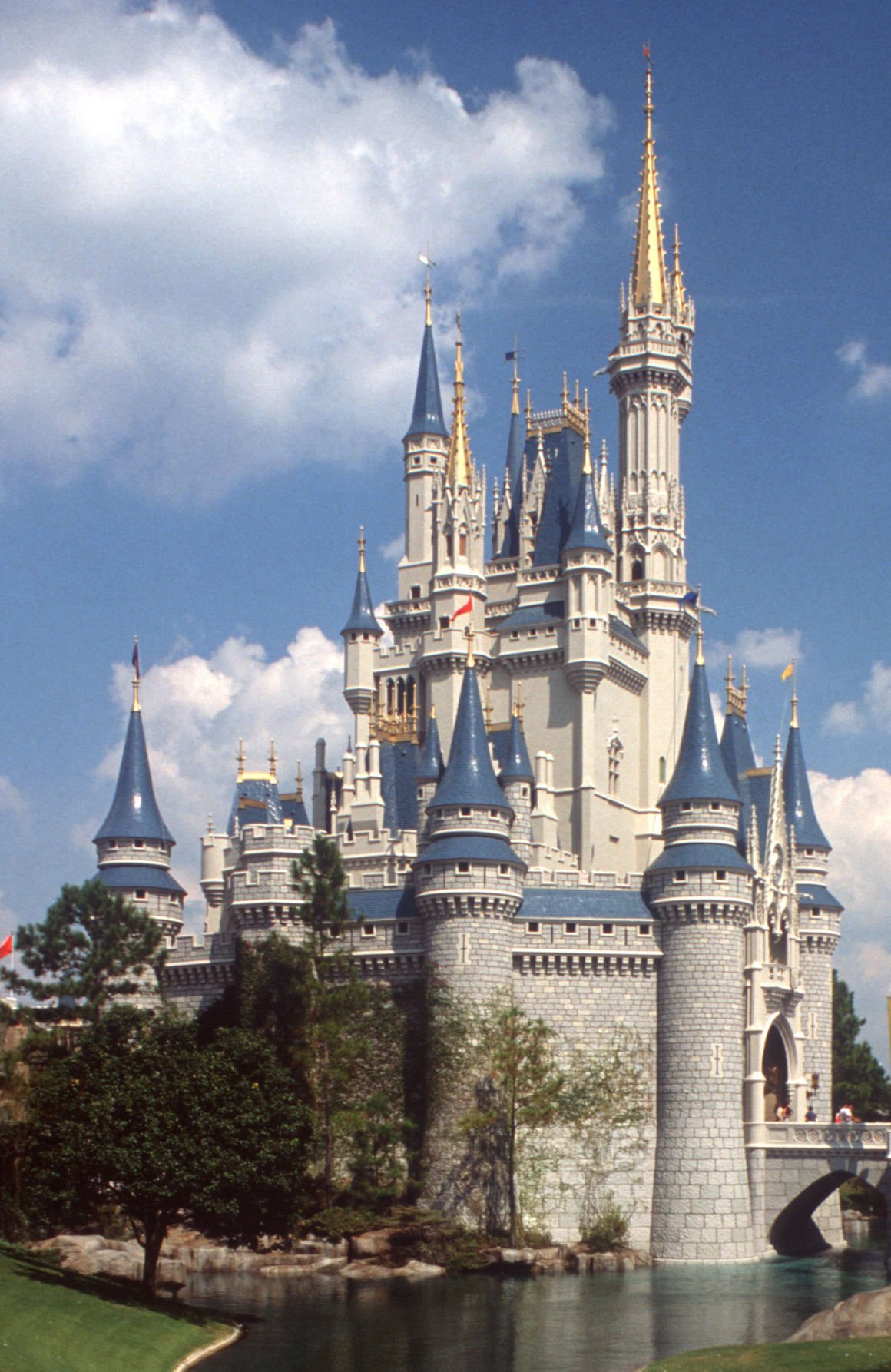 Travel agent No reason to cancel Disney World trip