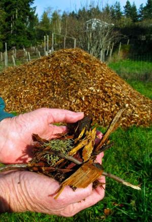 It isn't compost: Find right mulch to supress weeds