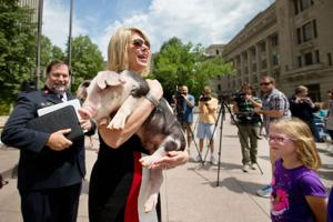 Omaha Mayor Jean Stothert pardons Sal the pig