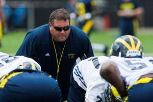 Barfknecht: Hoke's Wolverines have yet to meet great expectations