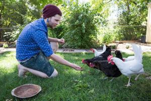 Backyard chicken coop has annoyed neighbors clucking