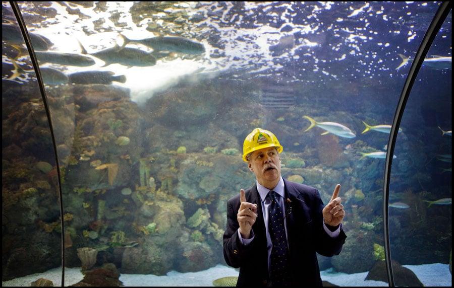 A Glimpse At The Henry Doorly Aquarium Renovation Blogs
