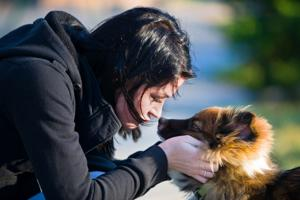 Can't find your pet? Social media is there to help