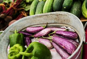 In Season: Eggplants tempting at summer peak