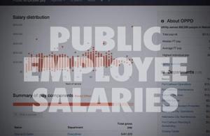 Curious about government salaries? Look no further