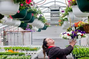 Container gardening puts beauty within reach