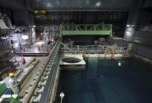 Damaged Japan nuke plant begin removing fuel rods