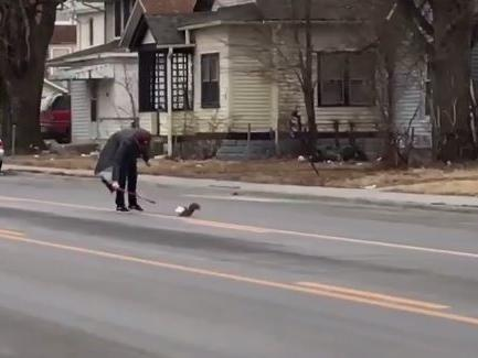 http://www.omaha.com/news/goodnews/omaha-man-who-came-to-aid-of-stuck-squirrel-receives/article_1b68ba28-ed69-11e6-91b5-53b7d4085928.html