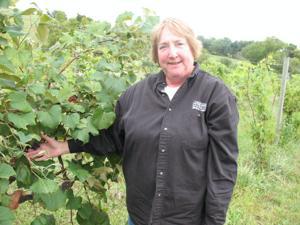 For Omaha couple's winery, grapes flourish amid the cottonwoods