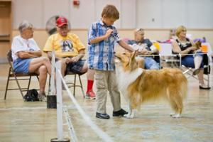 Pups strut their stuff at Dogfest in Fremont