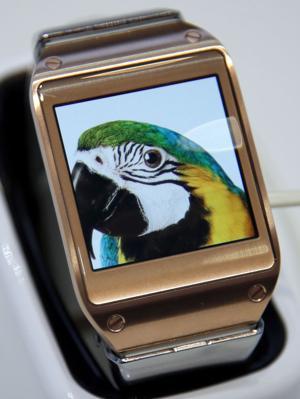 Samsung's smartwatch has gobs of gear