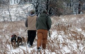 Legislature advances bill to end Nebraska's mountain lion hunting
