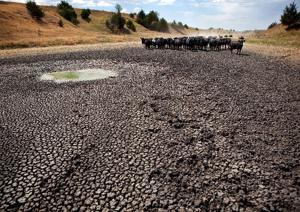 Midlands a 'battleground' for climate change