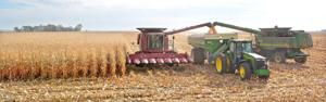Espionage in the cornfield: Designer seeds tested in Iowa stolen by China