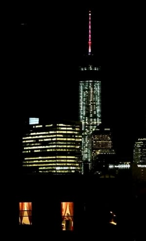 Spire, beacon of 1 World Trade light up NYC
