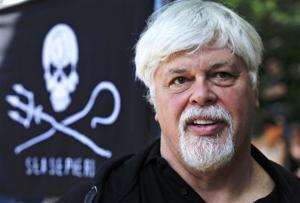 Fugitive whaling protester: 'We're not pirates'