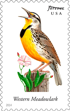 Nebraska's state bird — western meadowlark — among songbirds on new postage stamps