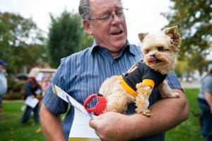 Pooches put on their Sunday best for Canines in Costumes