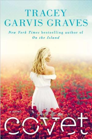 Book review: 'Covet' takes deep look inside broken marriage