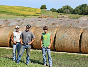 Greener pastures, cheaper hay a welcome surprise in drought