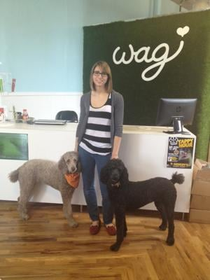 Dog groomer, retail shop Wag moves to Midtown